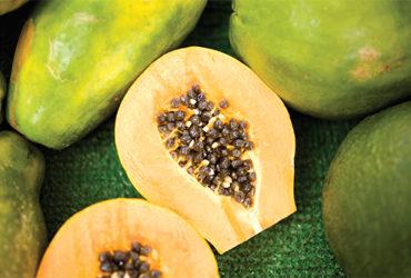fruite-2
